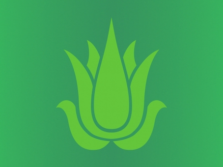 Nature's Beauty aloe vera range icon